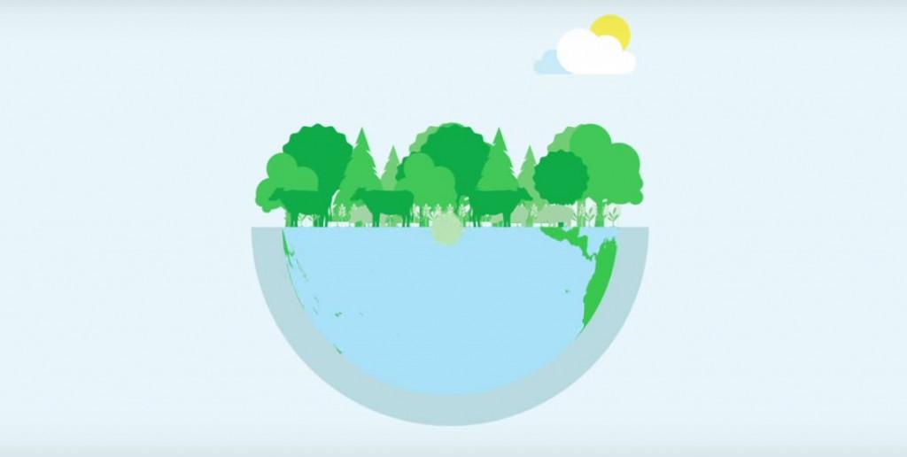 la biomasa energia de la naturaleza